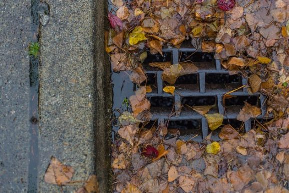 Clogged Stormwater Drain Leaves